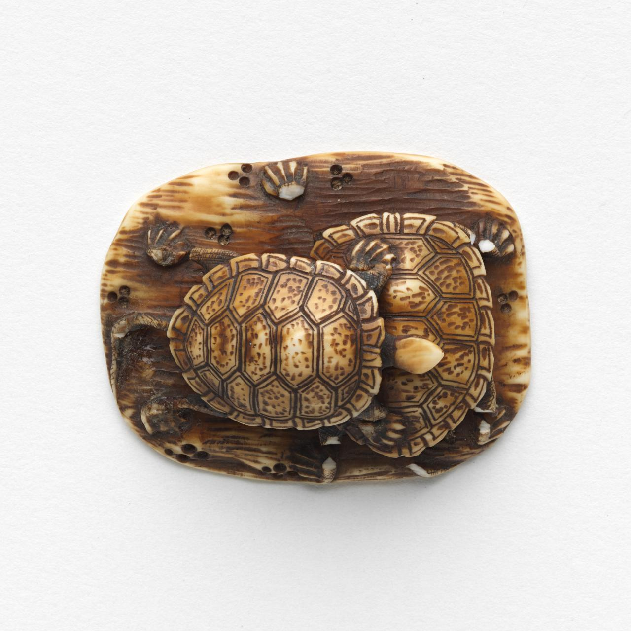 Two tortoise, Netsuke