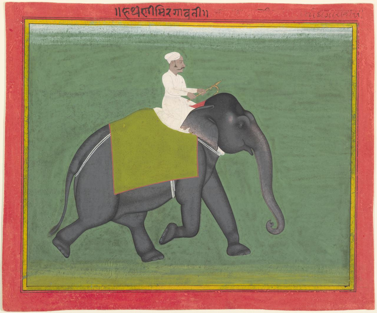The elephant Mrigavati