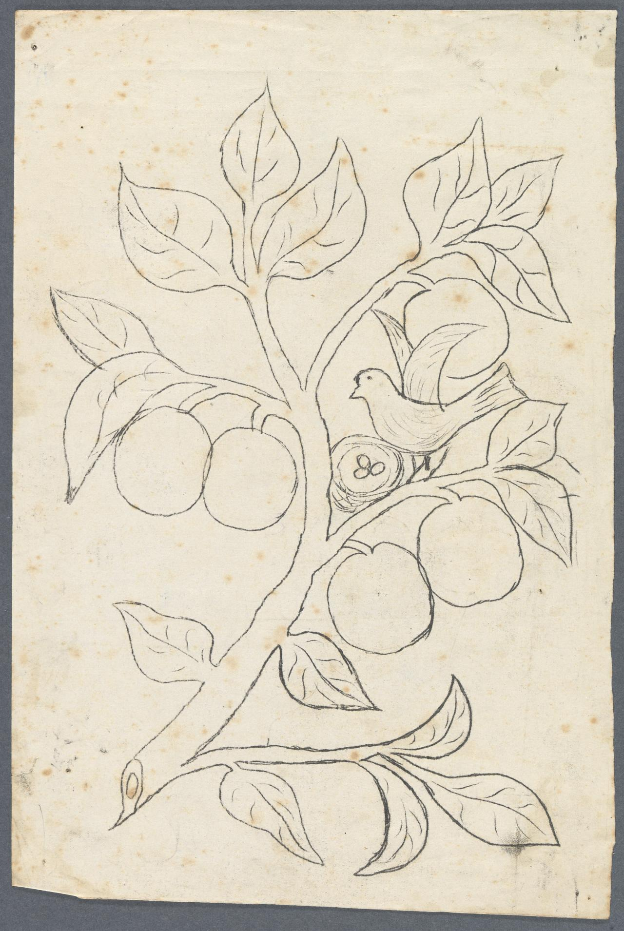 Template for a panel for a bookcase (bird on fruiting branch)