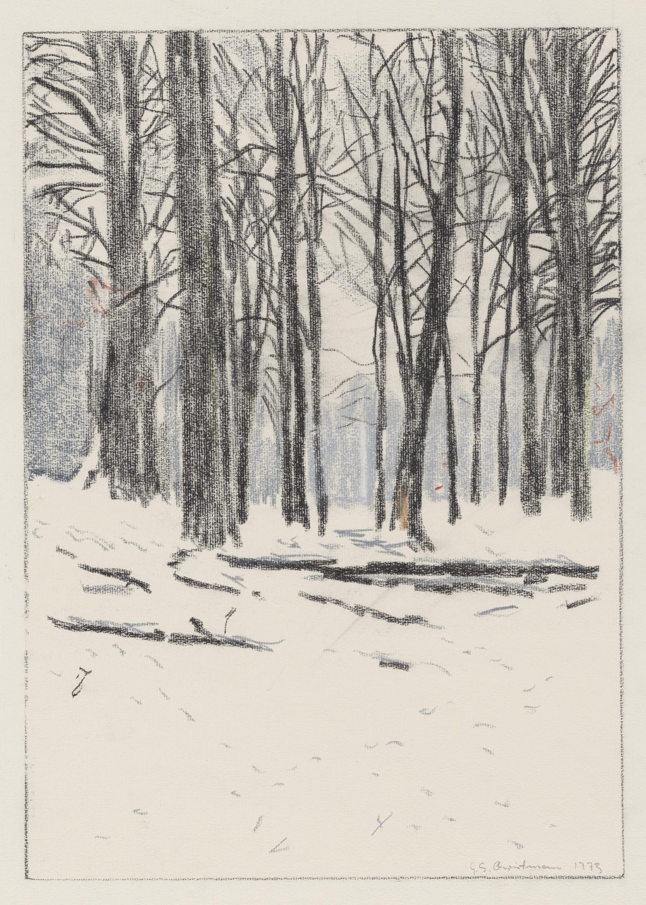 (Untitled) (Trees in snowy landscape)