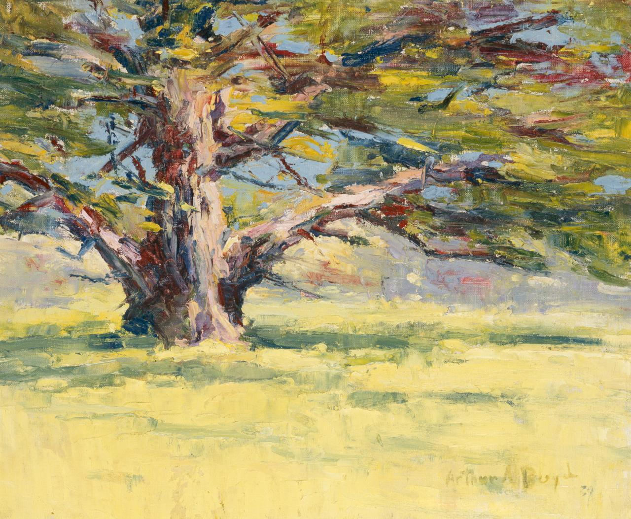 Oak tree in yellow field