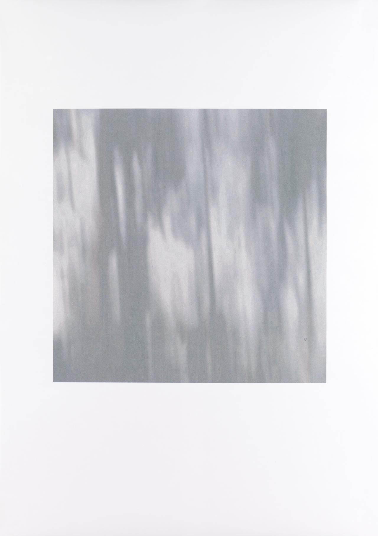 Untitled (Ghost gum)