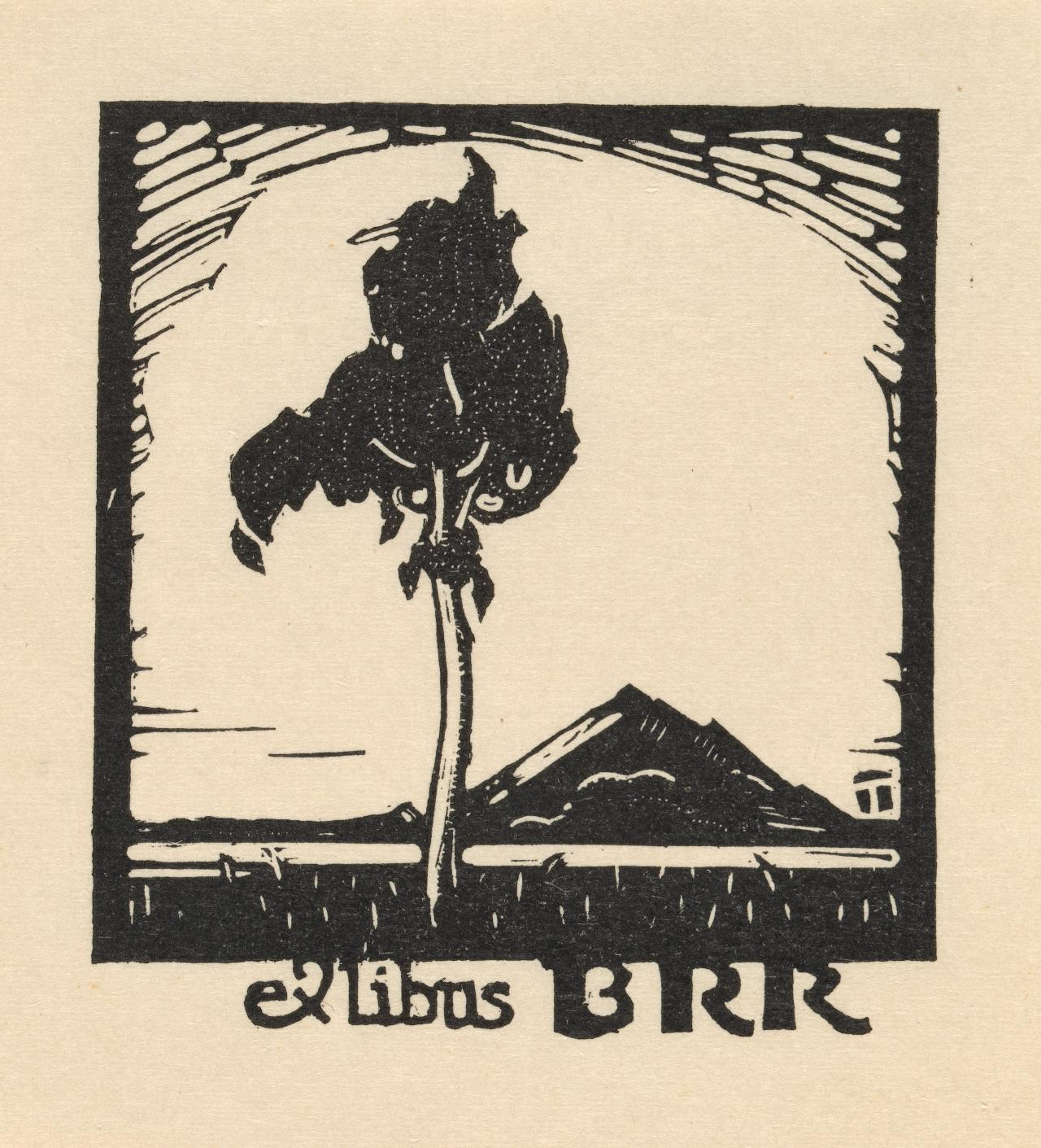 Bookplate: B. R. Richardson (View of Pyramid Hill across the plains)