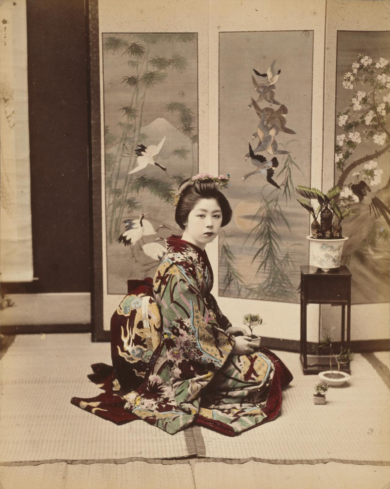 No title (Young woman holding bonsai)