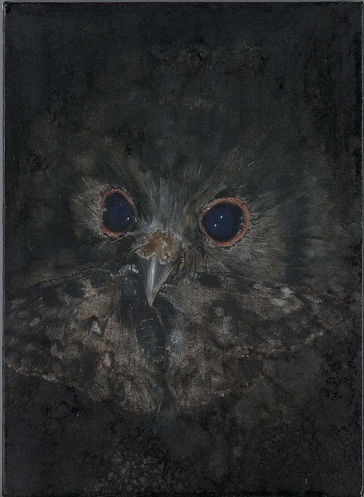Untitled (Owl from Waldhaus)