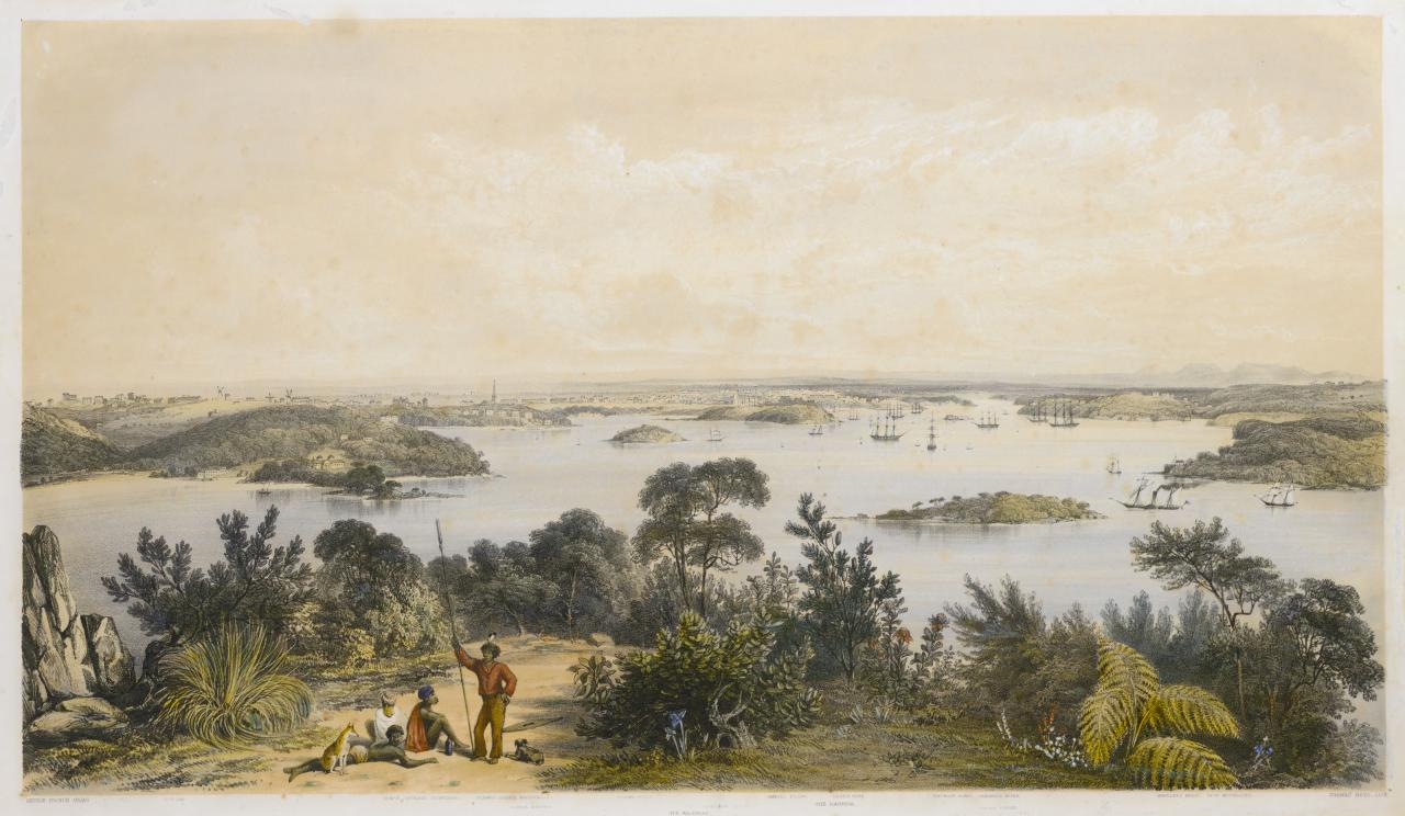 The city and harbour of Sydney, from near Vaucluse
