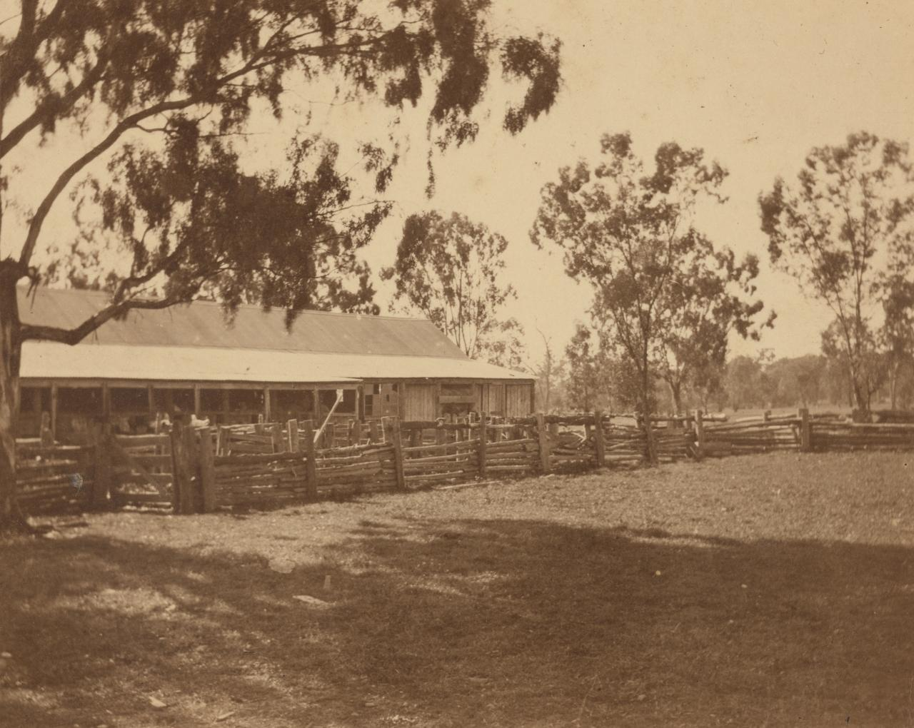 Brocklesby Shed, Corowa
