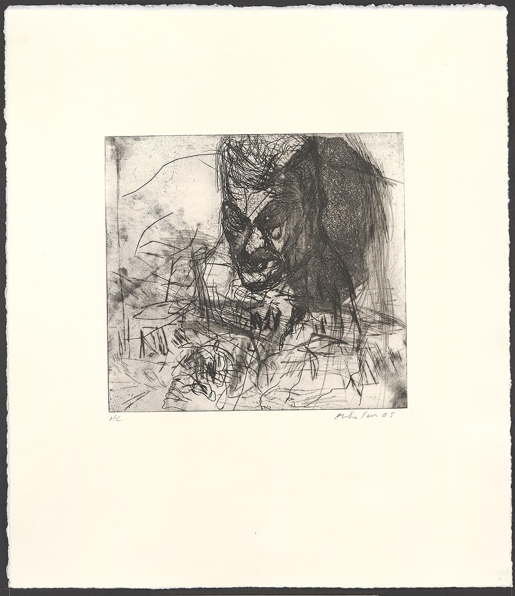 Plate 28 from Rat into eye
