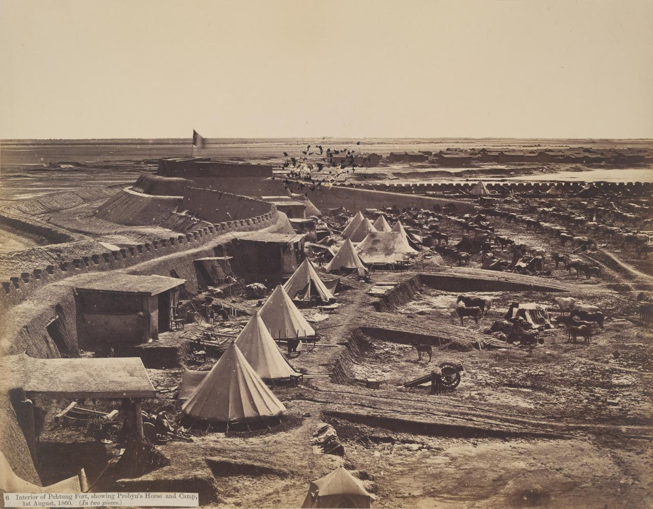 Interior of Pehtung Fort, showing Probyn's horse and camp, 1st August, 1860
