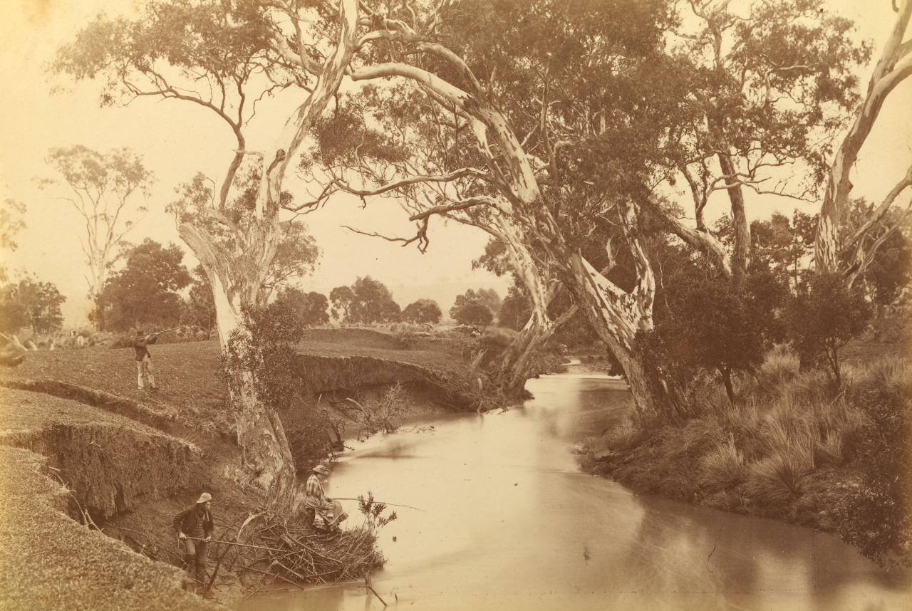 View on the Moorabool River, near viaduct