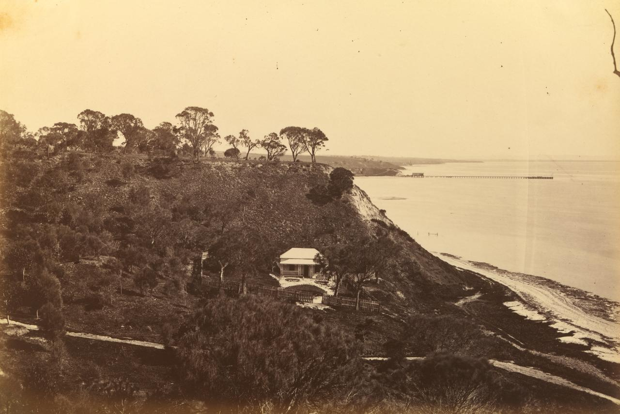 Coast scene, near Drysdale, Corio Bay