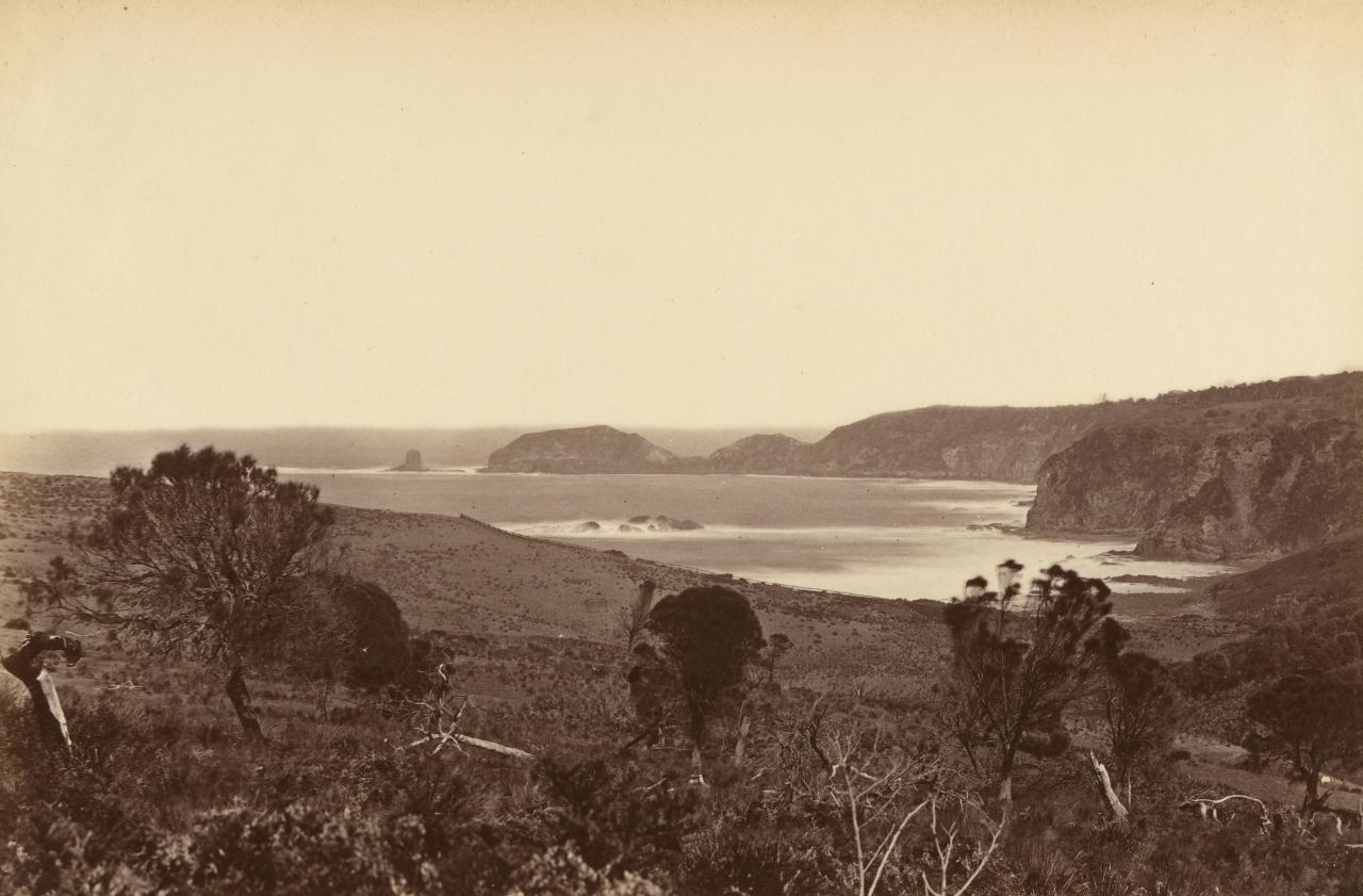 Coast scene near Cape Schanck