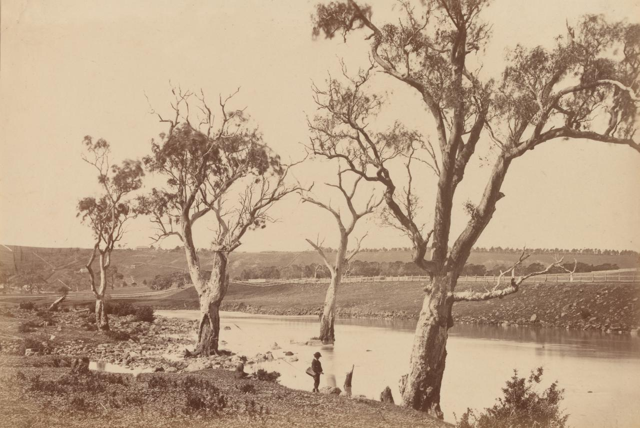 View on the Barwon River, near Queen's Park, Geelong