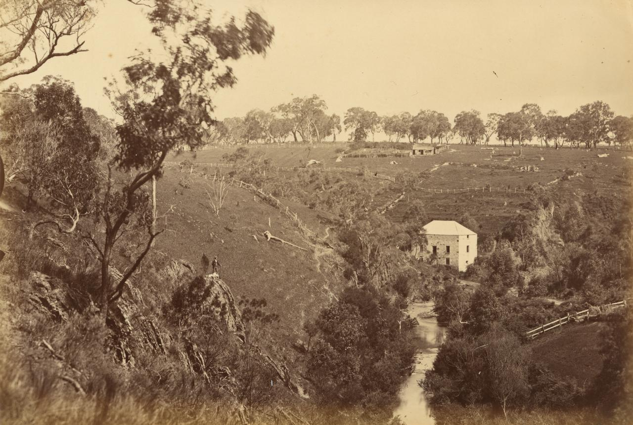View on the Plenty River, Janefield