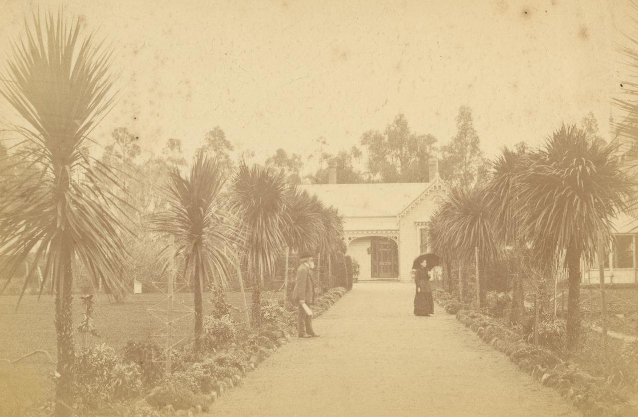 Avenue of palm trees and Curator's cottage, Botanic Gardens, Ballarat