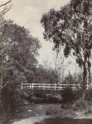 Bridge on the Badger River at Healesville