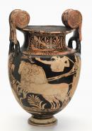 Volute krater (Faliscan red-figure ware)